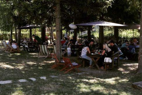 vila-davidovic-fruska-gora-02