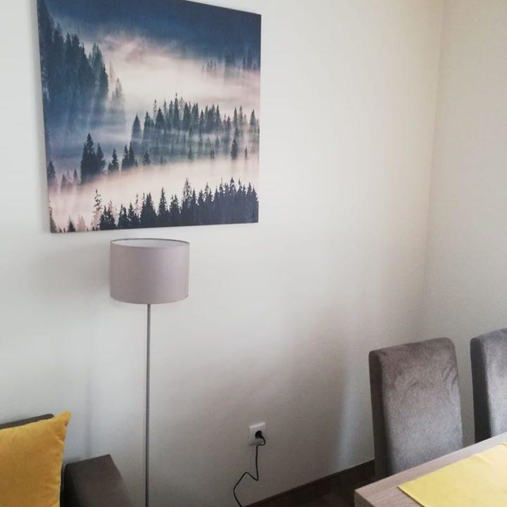 apartmani-borova-iglica-divcibare-07