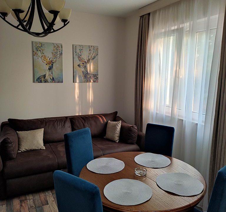 apartmani-borova-iglica-divcibare-16