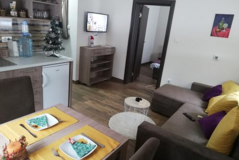 apartmani-borova-iglica-divcibare-17