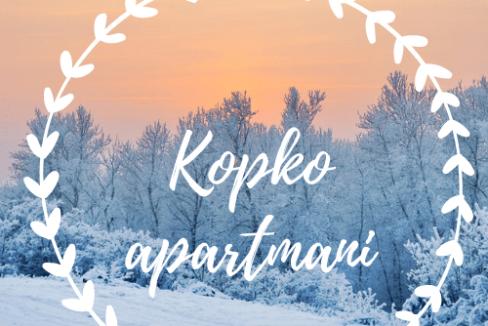 kopko-apartmani-kopaonik-16