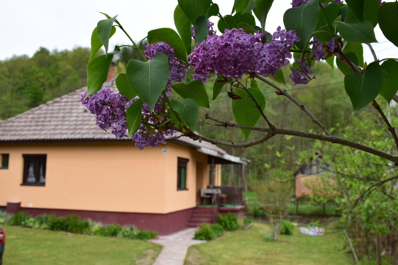 Kuća na selu