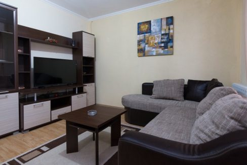 apartman-1-andric-smestaj-tara-1