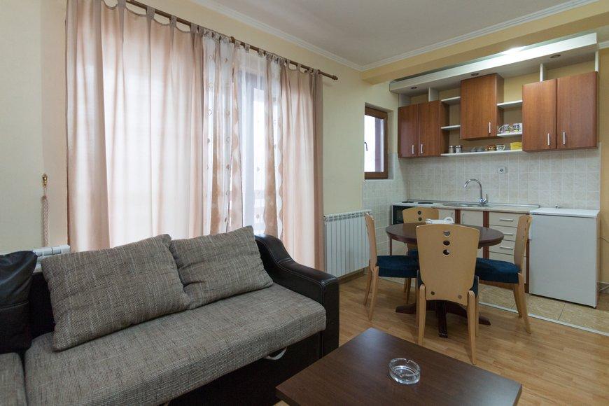 apartman-1-andric-smestaj-tara-4