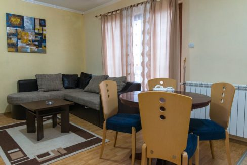 apartman-1-andric-smestaj-tara-5
