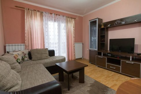 apartman-2-andric-smestaj-tara-1