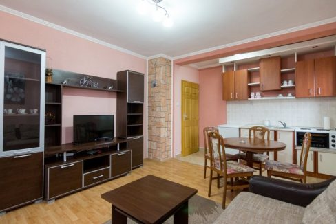 apartman-2-andric-smestaj-tara-2