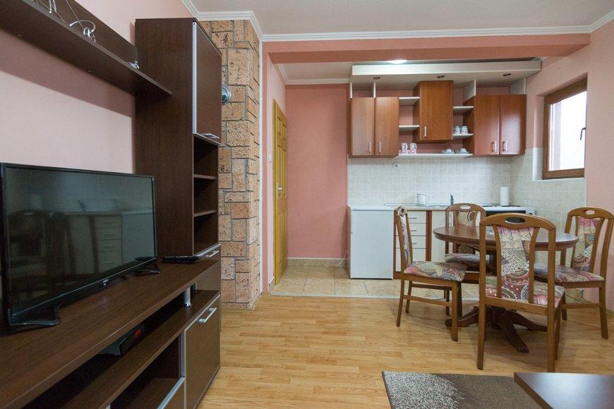 apartman-2-andric-smestaj-tara-3