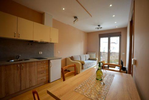 apartman-goca-kalman-zlatibor-smestaj (11)