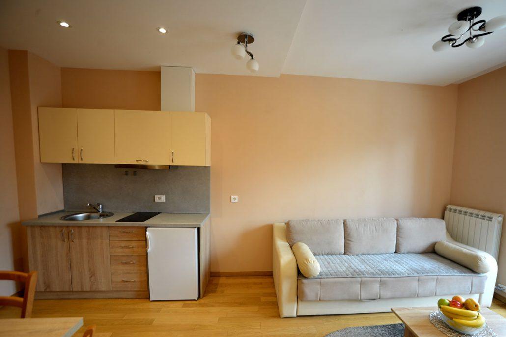 apartman-goca-kalman-zlatibor-smestaj (2)