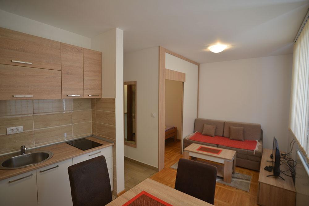 apartmani-miki-zlatibor (7)