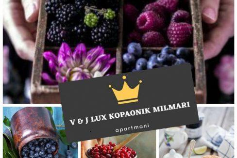 apartmani-vj-lux-milmari-kopaonik (6)