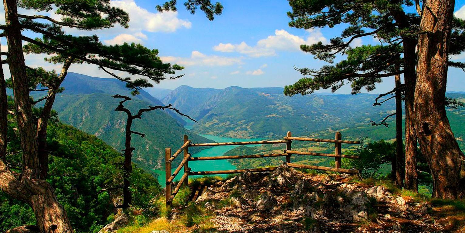 Planina tara vidikovac