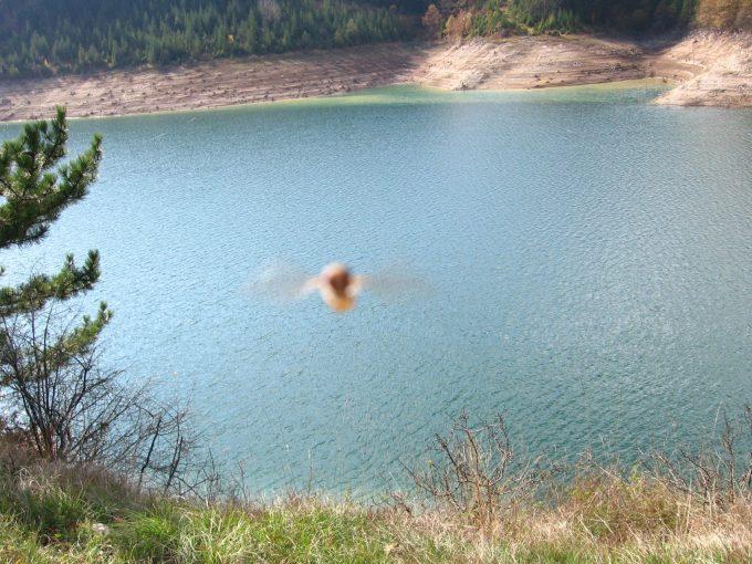 zaovinsko-jezero (11)