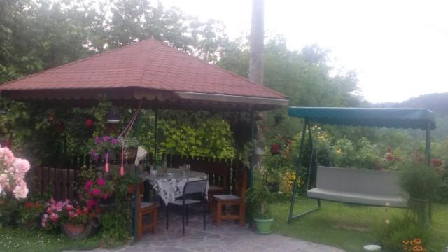 seosko-domacinstvo-bosa-damljanovic (11)