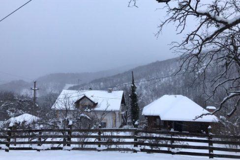 seosko-domacinstvo-bosa-damljanovic (15)