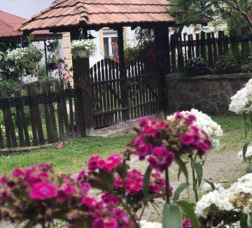 seosko-domacinstvo-bosa-damljanovic (3)