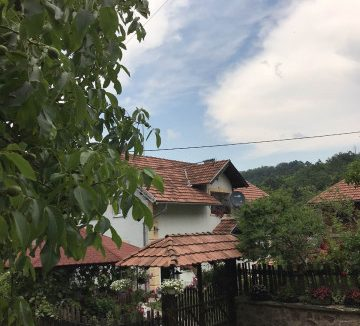 seosko-domacinstvo-bosa-damljanovic (8)