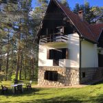 Zlatiborska kuća u šumi