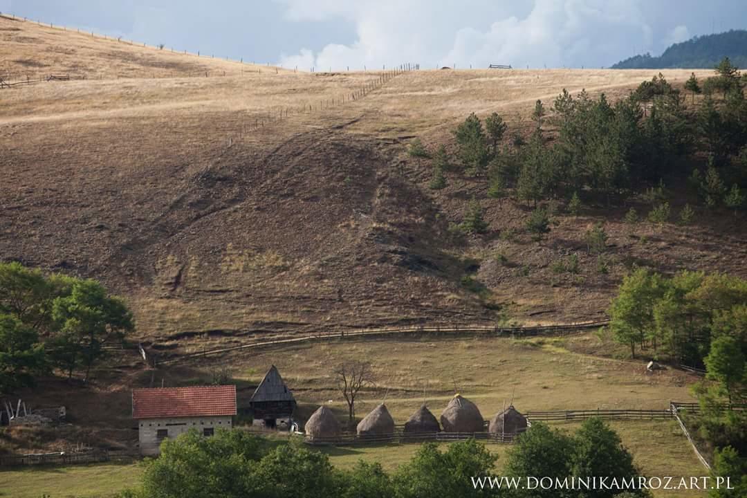 camp-viljamovka-kremna (1)