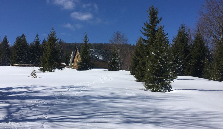 golija-vikendica-cesta-vrela (12)