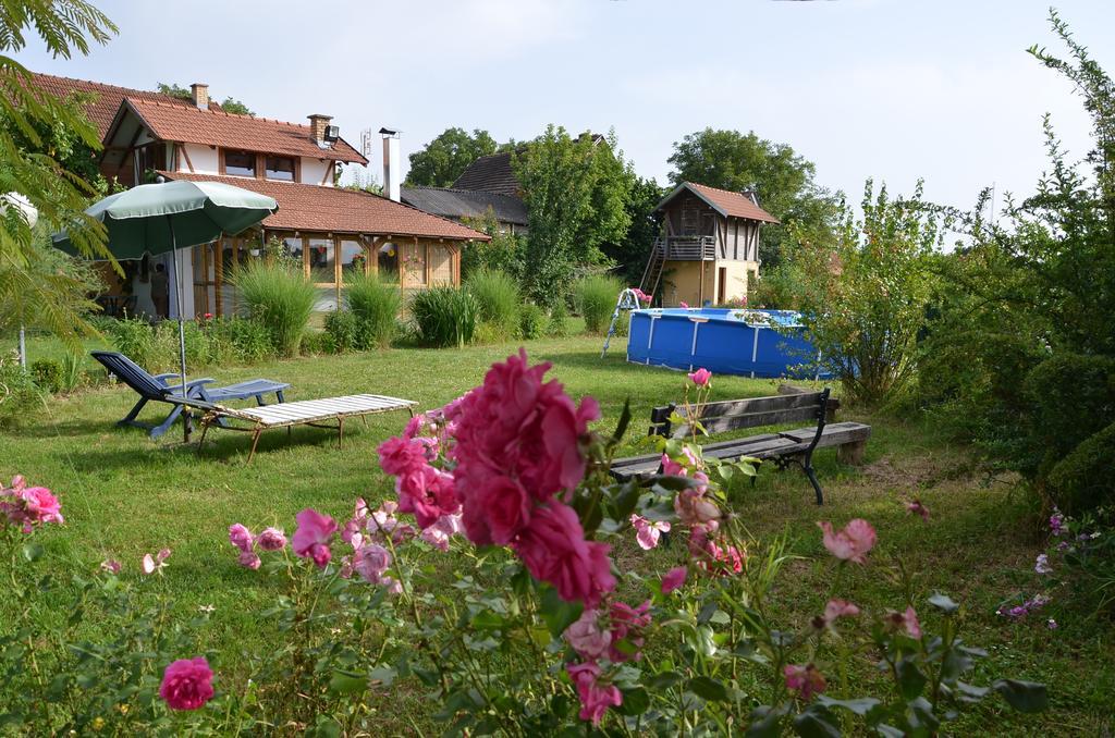 morava-garden (11)