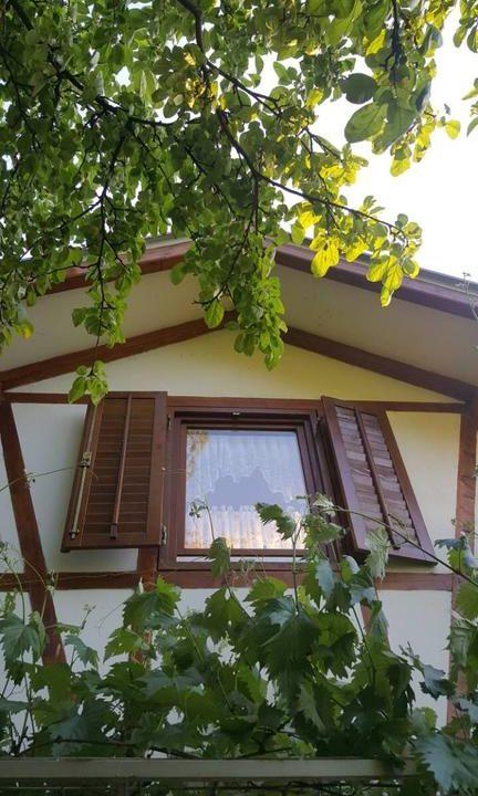 morava-garden (24)