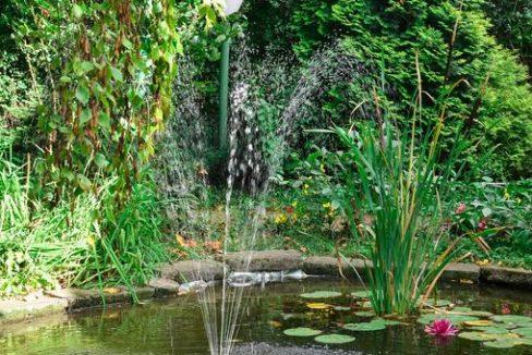 morava-garden (7)