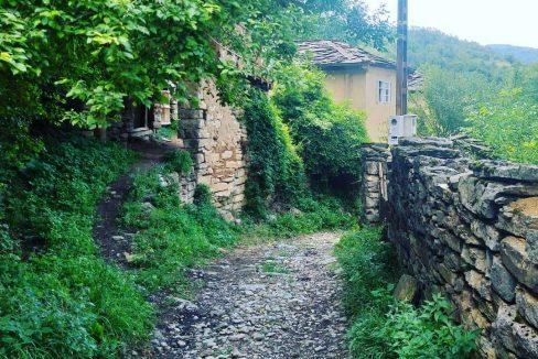 domacinstvo-petrovic-stara-planina-6