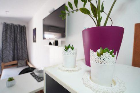 iva-apartman-kladovo (3)