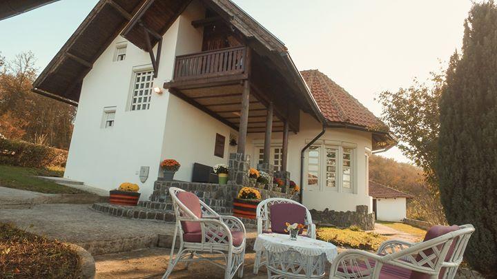 villa-mira-mackat-zlatibor (9)
