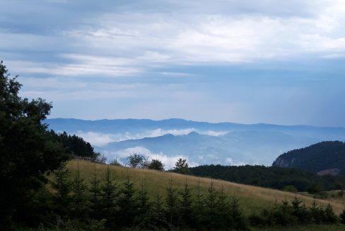 vila-hajdi-tara (6)