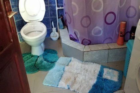 seoski-mir-radicevici-kupatilo