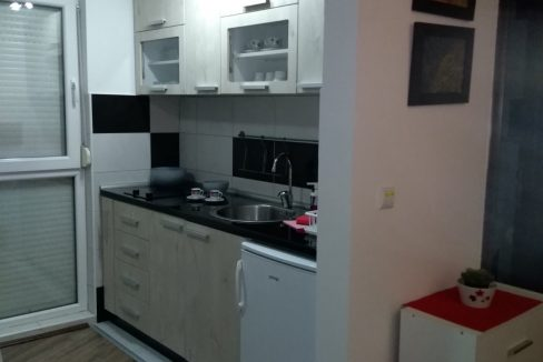 studio-apartman-tara-divcibare (17)