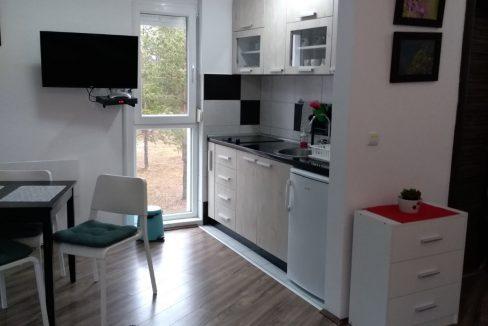 studio-apartman-tara-divcibare (8)