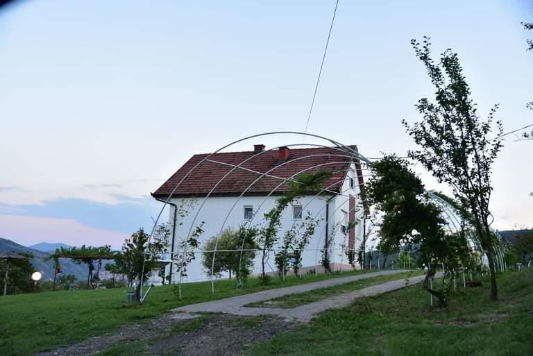 vila-dusanovac (10)