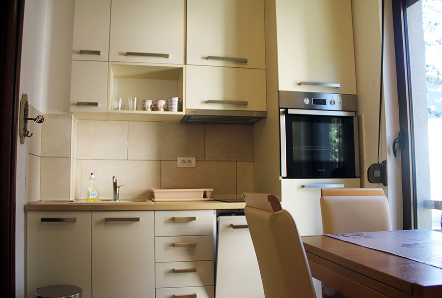 apartman-coyco-zlatibor (3)