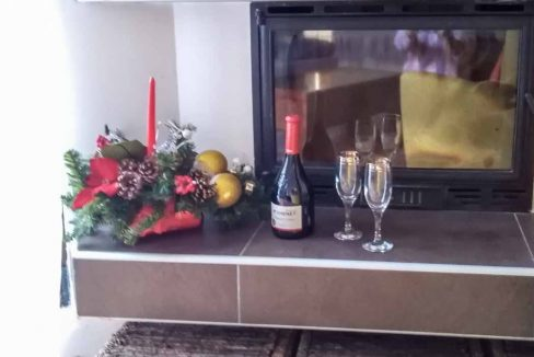 apartman-coyco-zlatibor (9)