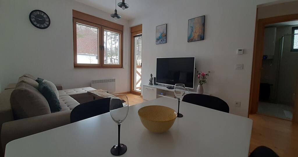 felix-apartmani-zlatibor (16)