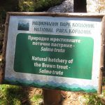 Kanjon Samokovske reke