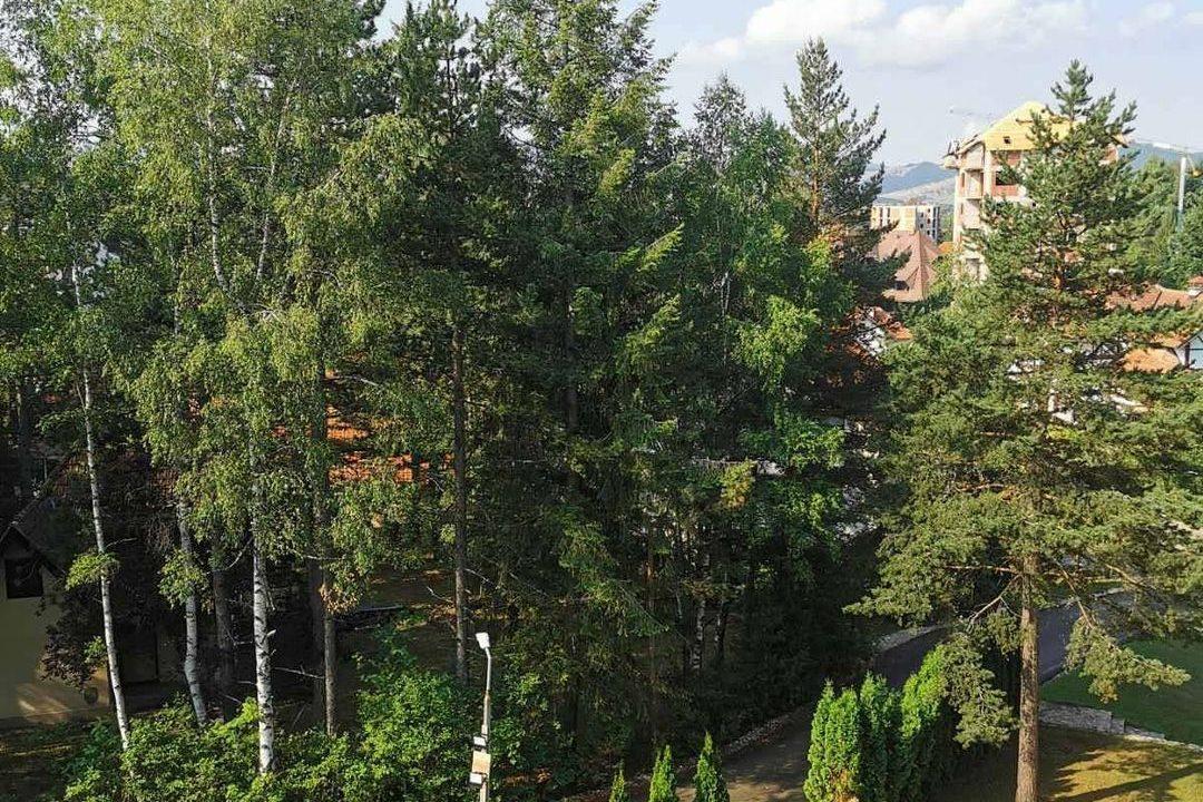 apartman-stefanovic-zlatibor (36)