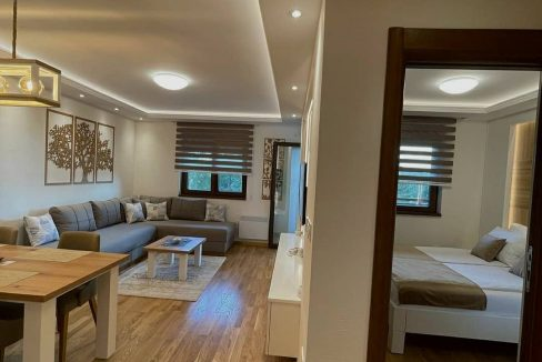 apartman-stefanovic-zlatibor (44)
