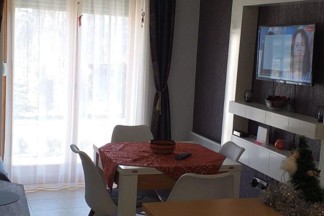 apartman-bella-zlatibor (8)